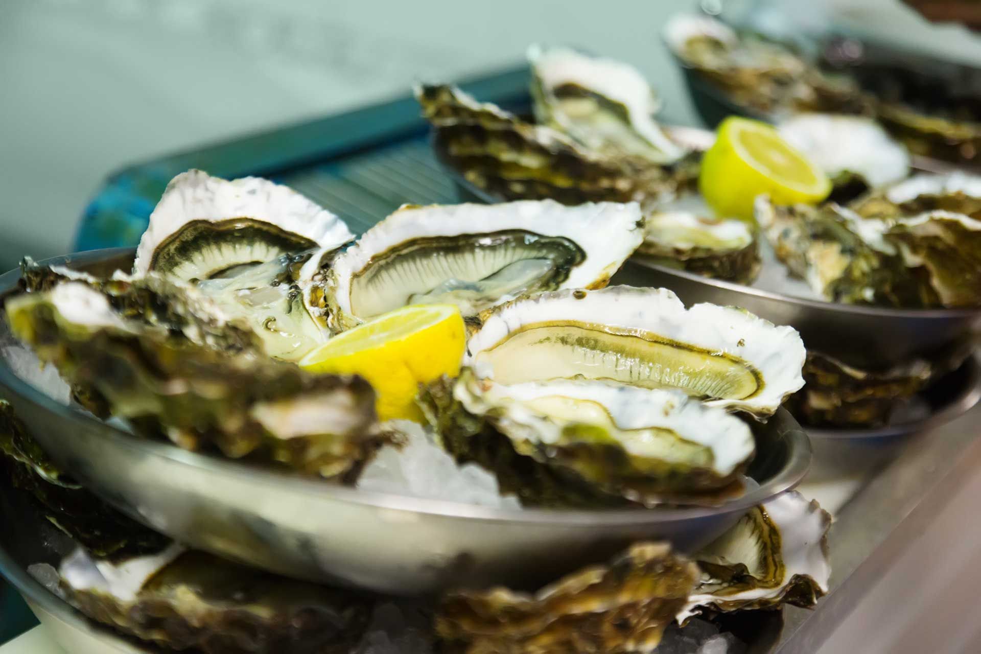 Oysters with lemon on plates at  oyster farm